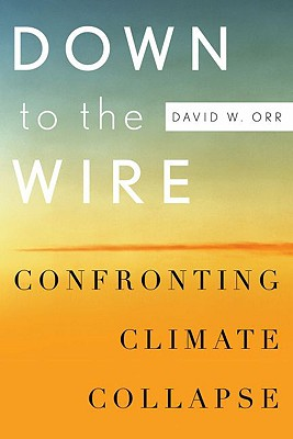 Down to the Wire By Orr, David W.
